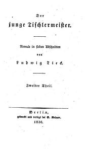 Der junge Tischlermeister: Novelle in sieben Abschnitten, Band 2