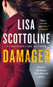 Damaged: A Novel