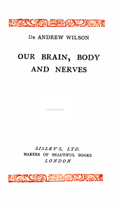 On Brain, Body and Nerves