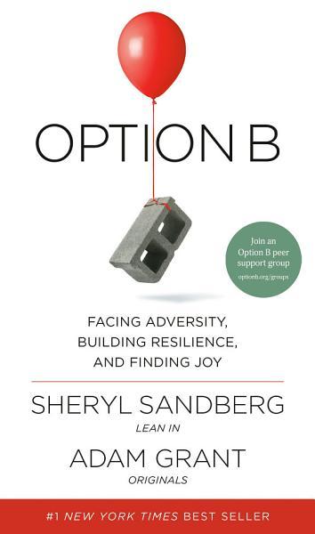 Download Option B Book