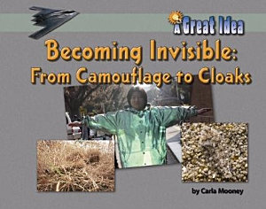 Becoming Invisible  From Camouflage to Cloaks