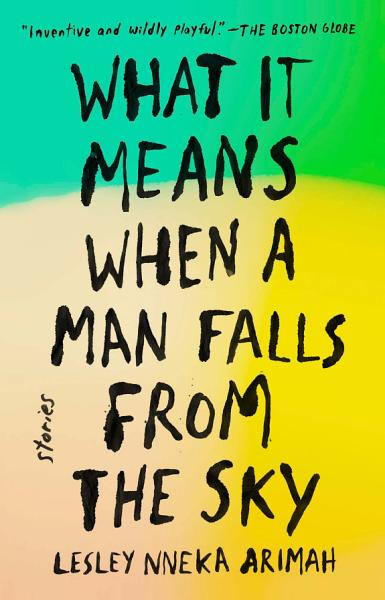 Download What It Means When a Man Falls from the Sky Book