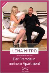 Der Fremde in meinem Appartement: Eine Story von Lena Nitro