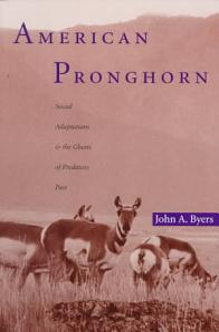 American Pronghorn PDF