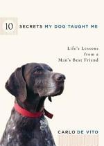 10 Secrets My Dog Taught Me