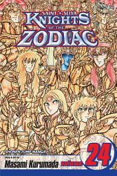Knights of the Zodiac (Saint Seiya), Vol. 24: Hades Reawakens