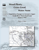 Wood Plenty  Grass Good  Water None Vegetation Changes in Arizona S Upper Verde River Watershed from 1850 To 1997