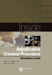Inside Adjudicative Criminal Procedure: What Matters and Why