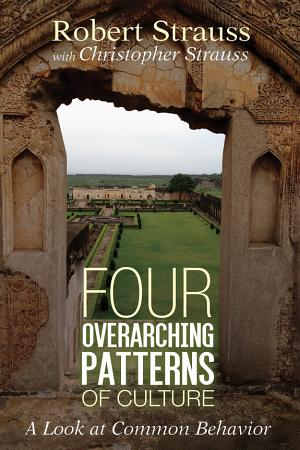 Four Overarching Patterns of Culture PDF
