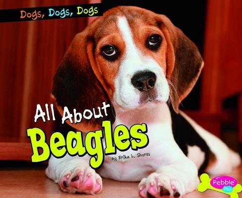 All about Beagles PDF