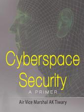 Cyberspace Security: A Primer