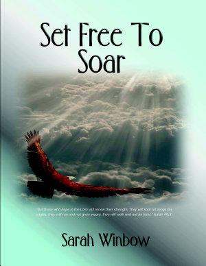 Set Free To Soar