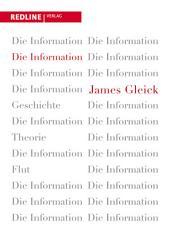 Die Information: Geschichte, Theorie, Flut