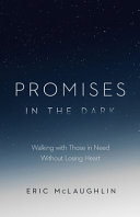 Promises in the Dark Book