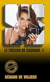 SAS 163 Le trésor de Saddam: Volume1