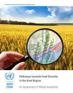 Pathways Towards Food Security in the Arab Region
