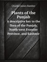 Plants of the Punjab