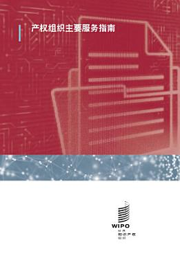A Guide to the Main WIPO Services  Chinese version  PDF