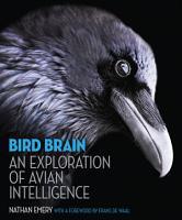Bird Brain PDF