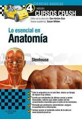 Lo esencial en Anatomía + Studentconsult en español: Edición 4