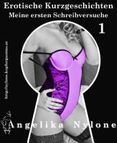 Erotische Kurzgeschichten 01 - Meine ersten Schreibversuche