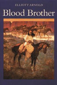 Blood Brother Book