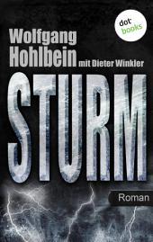 Sturm: Roman. Elementis -
