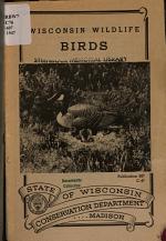 Wisconsin Wildlife--birds