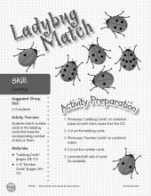Counting--Ladybug Match Game