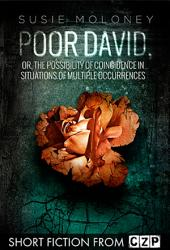 Poor David, or, The Possibility of Coincidence in Situations of Multiple Occurre: Short Story