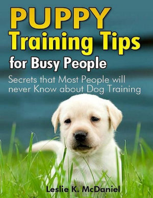 Puppy Training Tips for Busy People  Secrets That Most People Will Never Know About Dog Training