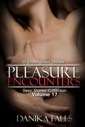 Pleasure Encounters (Sexy Stories Collection Volume 17): 11 Erotic Short Stories