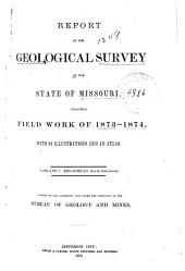Report of the Geological Survey of the State of Missouri: Including Field Work of 1873-1874 ...