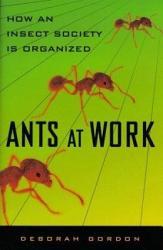 Ants At Work Book PDF