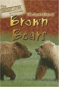 The Secret Lives of Brown Bears PDF