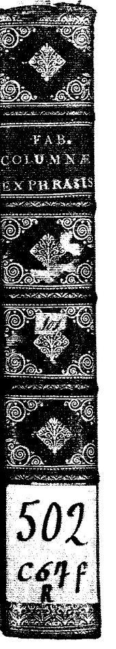 Fabii Columnae... Minus cognitarum rariorumque nostro coelo orientium stirpium Ekphrasic: qua non pauce ab antiquioribus Theophrasto, Dioscoride, Plinio