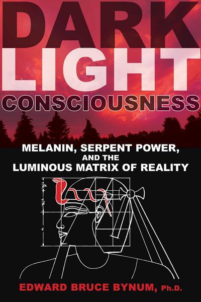 Dark Light Consciousness