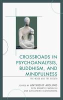 Crossroads in Psychoanalysis  Buddhism  and Mindfulness PDF