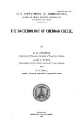 The Bacteriology of Cheddar Cheese
