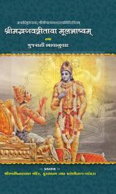 Geetabhasyam: Swaminarayan Book