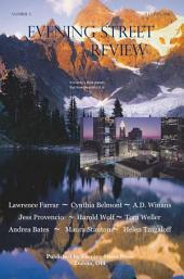 Evening Street Review No. 5