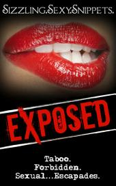 Sexcapades: Sizzling.Sexy.Snippets: Eleven Scenes From Nine Authors