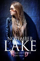 November Lake (Book 2): Teenage Detective