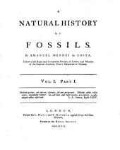 A Natural History Of Fossils: Volume 1, Issue 1