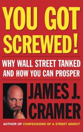 You Got Screwed!: Why Wall Street Tanked and How You Can Prosper