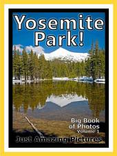 Yosemite Park! vol. 1: Big Book of Yosemite Park Photographs & Pictures