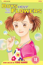 Boys Over Flowers: Volume 18