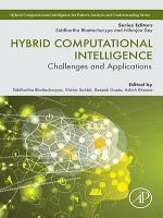 Hybrid Computational Intelligence PDF