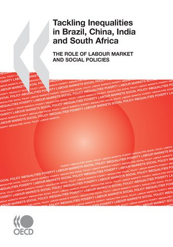 Tackling Inequalities in Brazil  China  India and South Africa The Role of Labour Market and Social Policies PDF