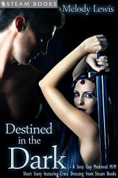 Destined in the Dark - Historical Cross-Dressing Medieval M/M Erotica from Steam Books